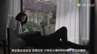 伟嘉猫粮广告片推广